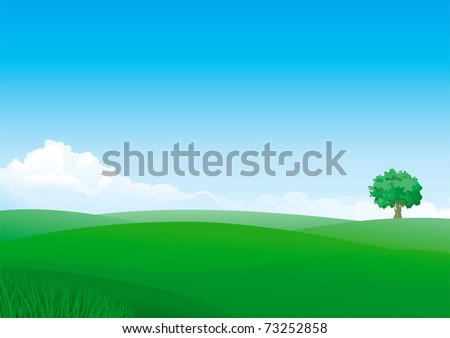 Summer landscape of green fields with grass and alone tree. - stock vector