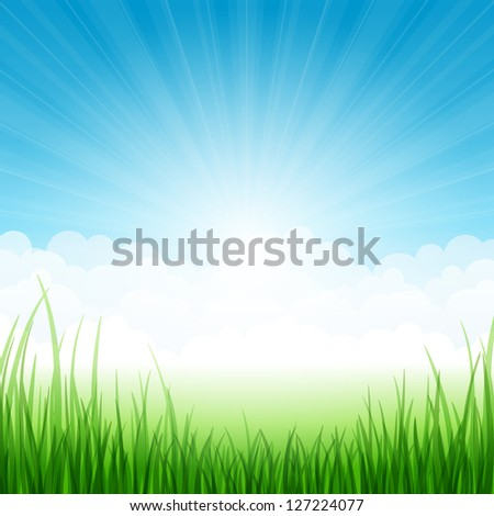 Summer landscape with grass and clouds. Vector illustration. - stock vector