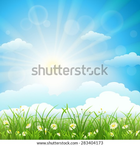 Summer meadow background with green grass, herbs, flowers, sky and sun - stock vector