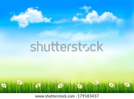 Summer nature background with green grass and sky . Vector.  - stock vector