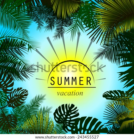 Summer sun and palm trees frame. Vector - stock vector