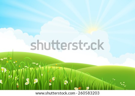 Summer sunny meadow landscape, vector illustration - stock vector