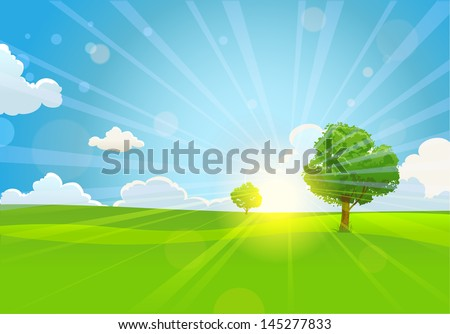 Summer sunny morning with trees - stock vector