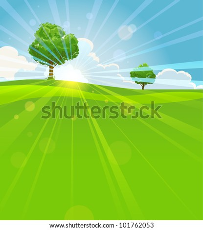 Summer vector landscape  with trees, green field and sun beams - stock vector