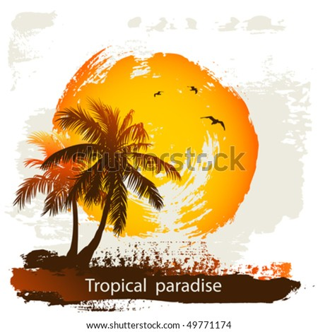 Sun and palm - stock vector