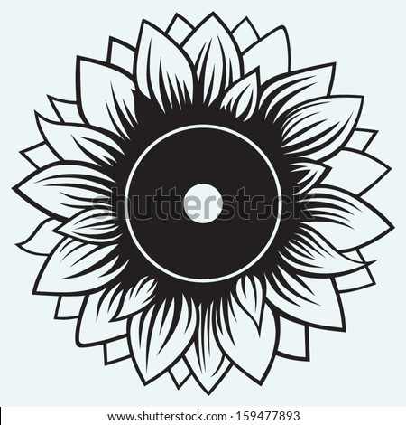 Sunflower isolated on blue background - stock vector