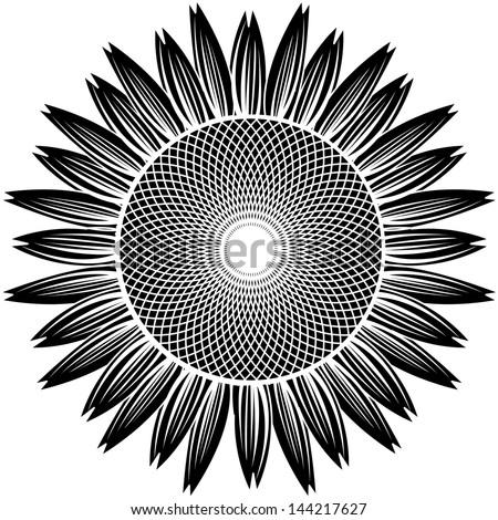sunflower silhouette vector - stock vector