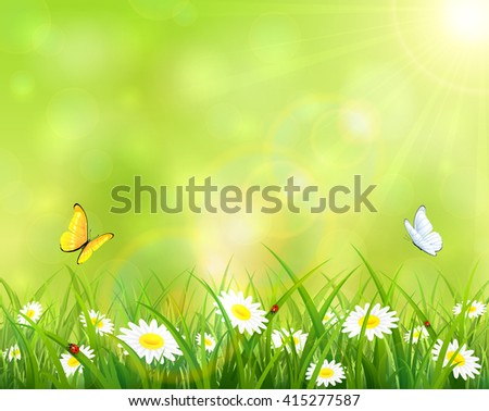 Sunny summer day, butterflies flying above the grass with flowers and ladybugs, illustration. - stock vector