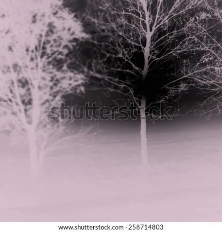 Sunrise behind a leafless tree. Vector illustration - stock vector
