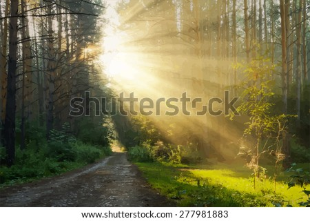 sunrise in the foggy forest, vector  - stock vector