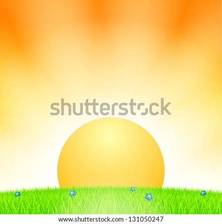 Sunset above meadow with grass and flowers - stock vector