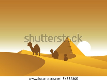 Sunset in Egypt - stock vector