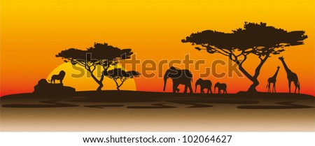 Sunset in Kenya - stock vector