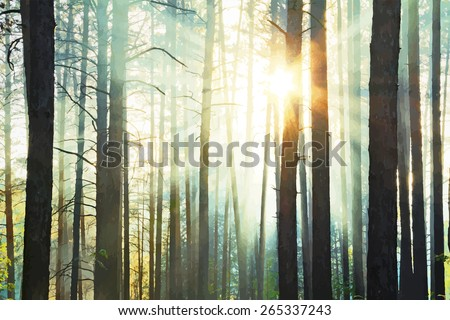 sunset in the woods, vector - stock vector