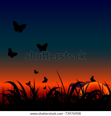 sunset meadow with butterflies background - stock vector
