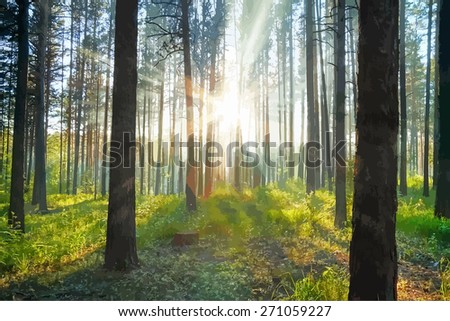 sunset woods  - stock vector