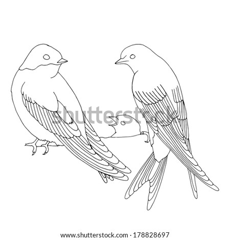 Swallow family on nest - stock vector