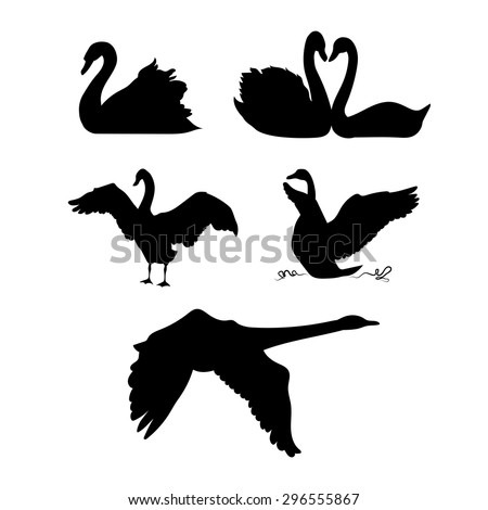 Swan vector silhouettes. - stock vector