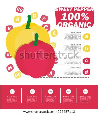Sweet Pepper Infographic , Vegetables , vector illustration - stock vector