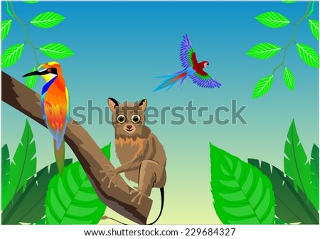 Tarsier and parrot of asian jungles animals - stock vector