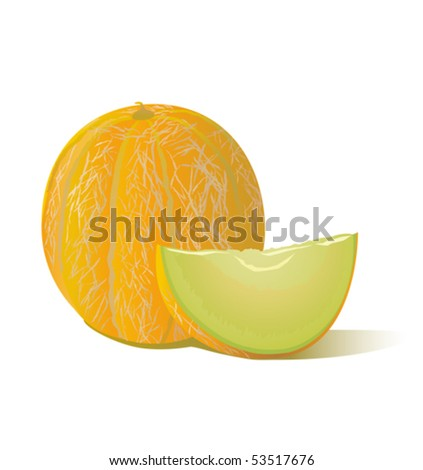 Tasty melon - stock vector