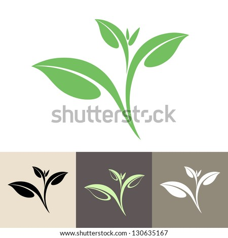 Green Tea Leaf Stock Vectors & Vector Clip Art | Shutterstock