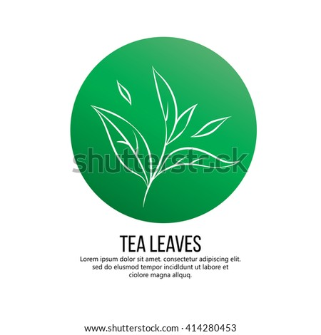 Tea plants Stock Photos, Images, & Pictures | Shutterstock