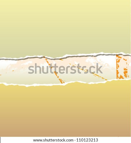 Teared Paper on a Grunge Background - stock vector