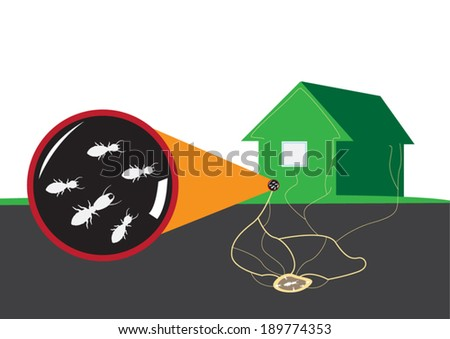 Termite attacks home from underground. Vector illustration - stock vector