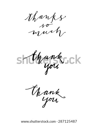 Thank You Script. Isolated on white. Thank You Calligraphy. Hand Painted Thank You Script. Cards elements.  - stock vector
