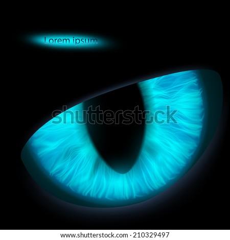 the animal's eyes - stock vector