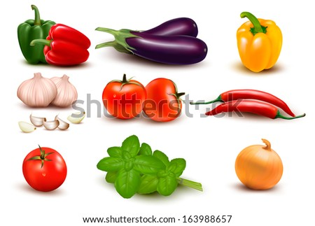 The big colorful group of vegetables. Vector.  - stock vector