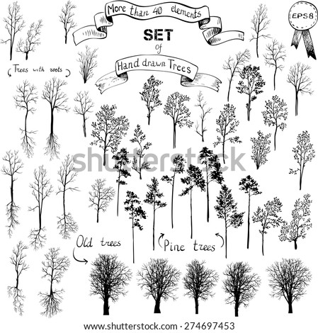 the biggest set of different hand drawn trees, winter trees,deciduous trees, conifers, old trees,trees with roots, hand drawn vector illustration - stock vector