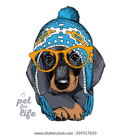 The christmas poster with the portrait of the dog Dachshund in the Chullo long knit hat and in the glasses. Vector illustration. - stock vector