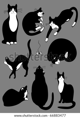 The complete set of cats of black color - stock vector
