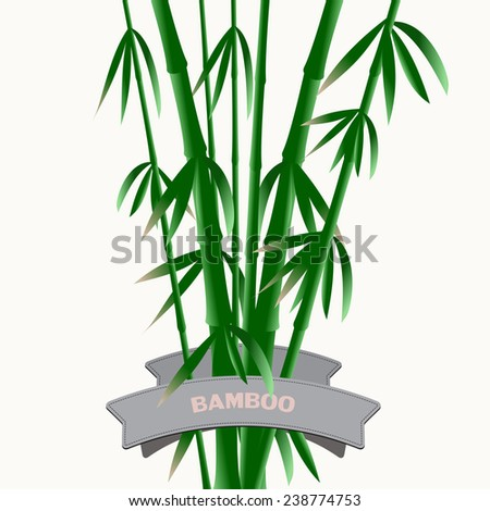 The composition of the branches of bamboo - stock vector