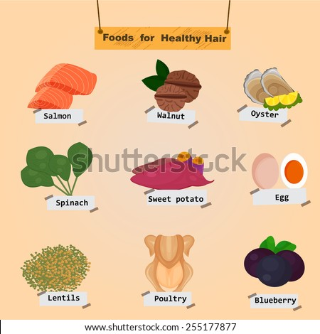 The Concept Of Foods for Healthy Hair with Vocabulary Separated on the Background Illustration,Vector  - stock vector