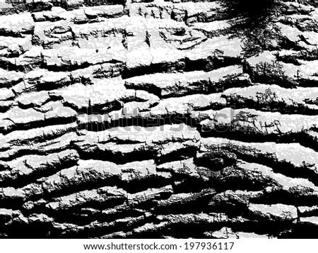 The cracks texture white, gray and black. Vector background. eps 8 - stock vector