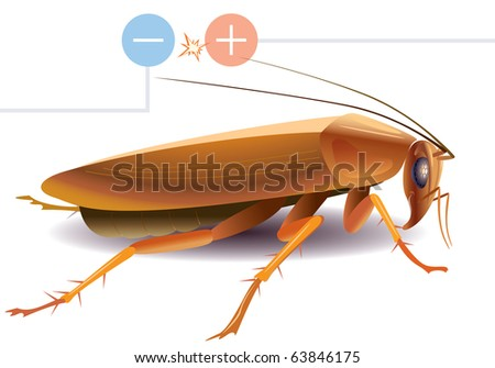 the curious cockroach the moustaches closes electric contacts - stock vector