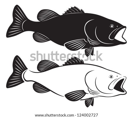 the figure shows fish bass - stock vector