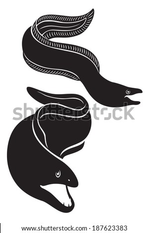 the figure shows the moray - stock vector