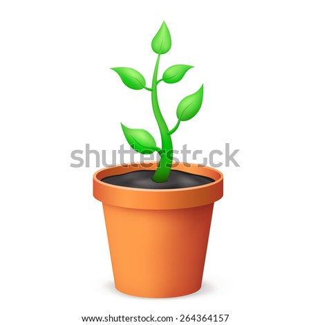 The flowerpot and growing plant on the white background - stock vector
