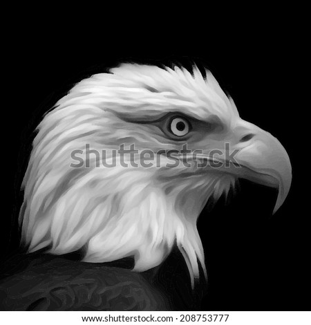 The head of a bald eagle, haliaeetus leucocephalus, isolated on black background. Side face portrait of an American eagle. Amazing gray scale vector image. Great for user pic, icon, label, tattoo. - stock vector