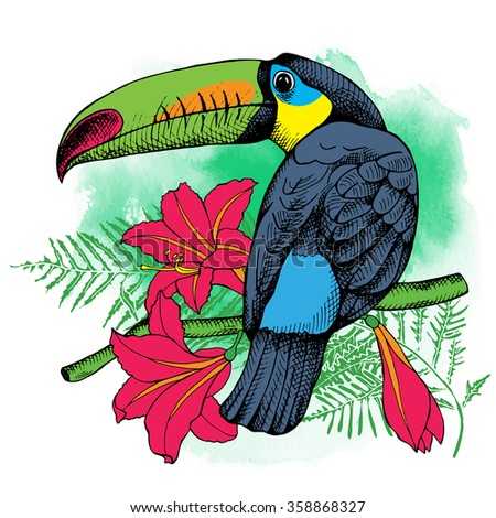 The image of the bird toucan on the exotic leaf and flowers. Vector illustrations. - stock vector