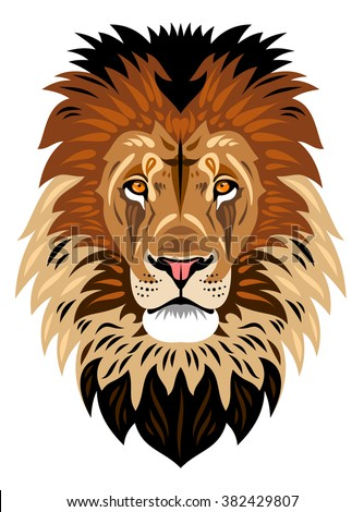 The muzzle of a lion - stock vector
