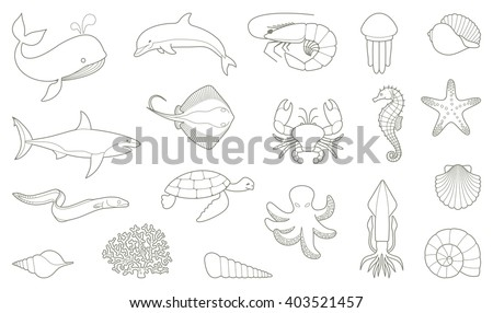 The outlines of fish and other sea creatures. Vector illustration - stock vector