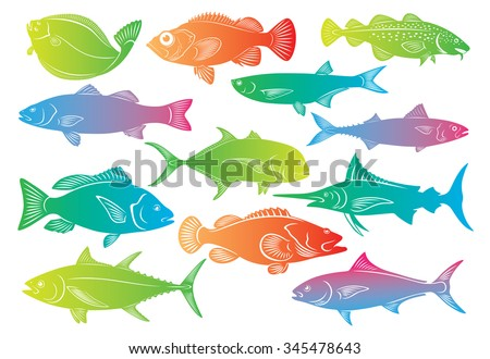 The picture shows a set of marine fish - stock vector