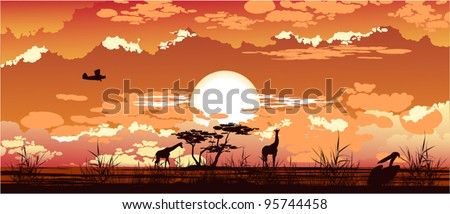 The plane flies at dusk over the African savanna - stock vector
