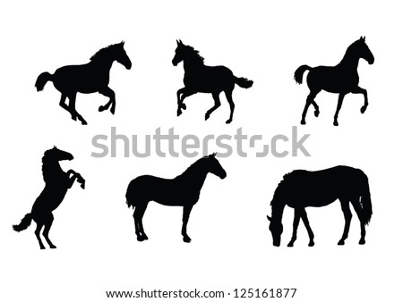 The set of Horse silhouette - stock vector