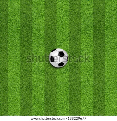The soccer ball in grass  - stock vector